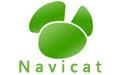 Navicat for MySQL mac版